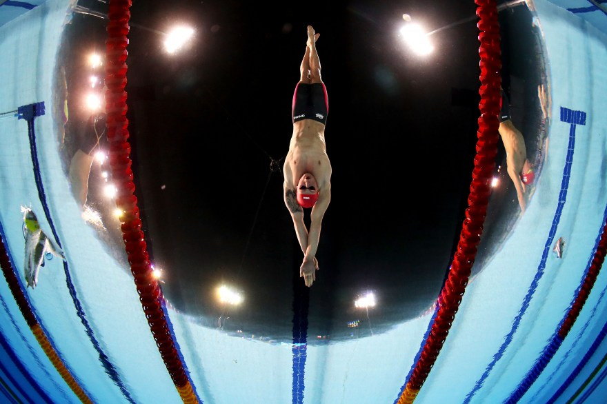 European Championships: Swimming in the medals